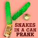 Snakes in a Can Prank